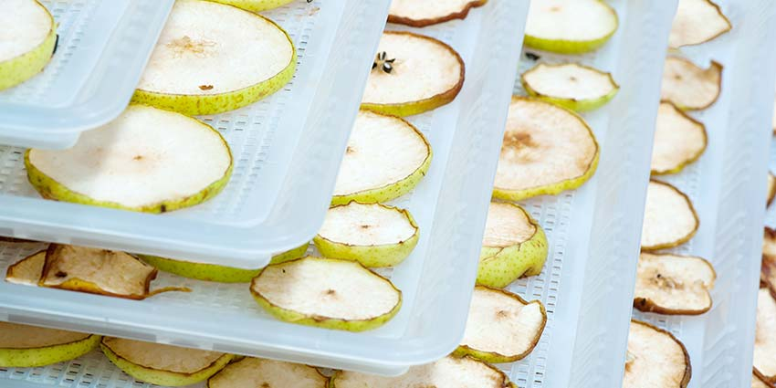 Food Dehydrator Guide