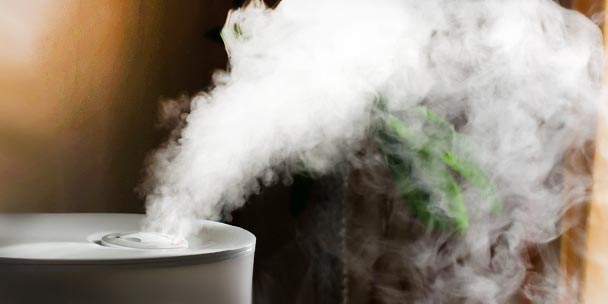 Cool Mist vs. Warm Mist Humidifiers