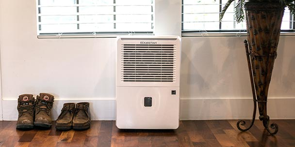 Dehumidifier Features: What to Look for When Buying a Dehumidifier